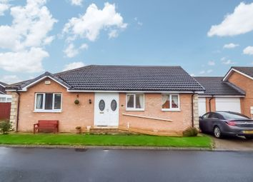 Thumbnail 2 bed bungalow for sale in Field House Close, Acklington, Morpeth