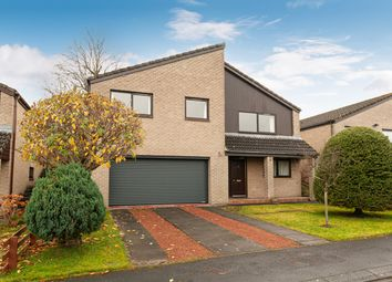 Thumbnail 4 bed detached house for sale in Shaws Park, Hexham, Northumberland