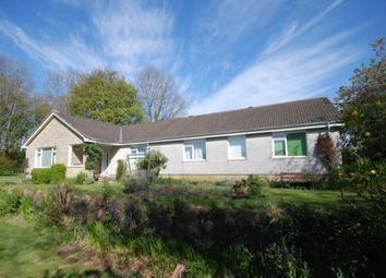 Thumbnail 4 bed detached house to rent in Ashwood, Station Road, Boarhills, St Andrews