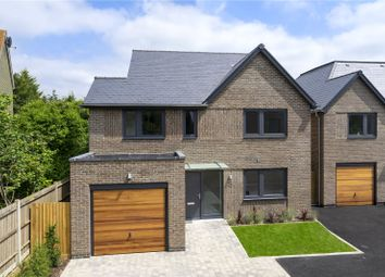 Thumbnail 4 bed detached house for sale in Deacon Place, Southwater, West Sussex
