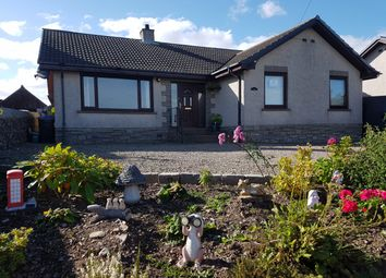 Thumbnail 4 bed bungalow for sale in Auchterless, Turriff, Aberdeenshire