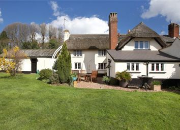 Thumbnail 4 bed link-detached house for sale in Oak Hill, East Budleigh, Devon