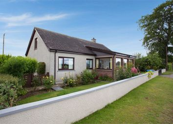 Thumbnail 3 bed detached bungalow for sale in Arabella, Arabella, Tain, Highland