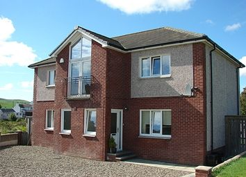 Thumbnail 4 bed detached house for sale in Piltanton Court, Lochans