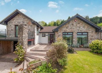 Thumbnail 4 bed detached bungalow for sale in Two Mile Oak, Newton Abbot