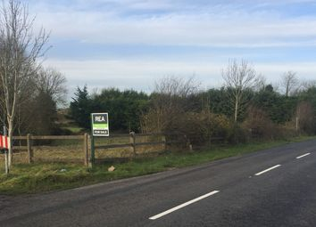 Thumbnail Property for sale in Clonmel Road, Mullinahone, Tipperary