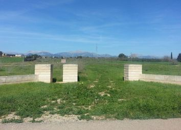 Thumbnail Land for sale in Spain, Mallorca, Sencelles