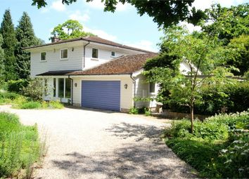 Thumbnail 5 bedroom detached house for sale in Birch Grove, Lake View Road, Felbridge, West Sussex