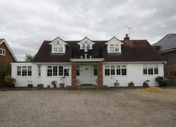 Thumbnail 5 bed detached house for sale in Mayland, Chelmsford, Essex