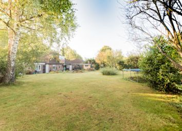 Thumbnail 4 bedroom bungalow for sale in Luxford Road, Crowborough