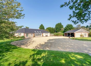 Thumbnail 3 bed detached bungalow for sale in The Common, South Creake, Fakenham