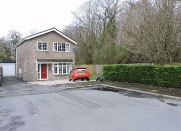 Thumbnail 3 bed detached house for sale in Margaret Street, Ammanford