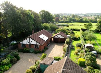 Thumbnail 4 bed detached bungalow for sale in Forest Road, Wokingham, Berkshire