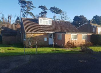 Thumbnail 3 bed detached bungalow to rent in Walton Close, St. Leonards-On-Sea