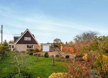 Thumbnail 3 bed bungalow for sale in Common Road, Hopton, Diss