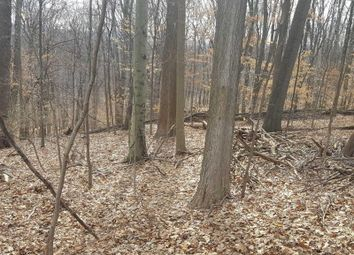 Thumbnail Land for sale in Tamarack Road Mahopac, Mahopac, New York, 10541, United States Of America