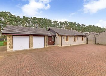 Thumbnail 2 bed detached bungalow for sale in Bowhouse Stables, Maddiston, Falkirk