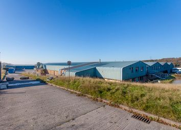 Thumbnail Industrial for sale in Belliver Way, Roborough, Plymouth