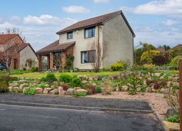 Thumbnail 3 bed detached house for sale in Curling Pond Court, Cupar