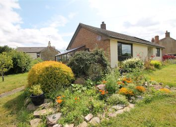 Thumbnail 2 bed detached bungalow for sale in Baynhams Walk, Broadwell, Coleford