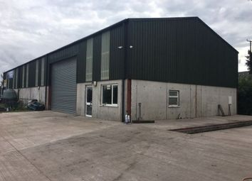 Thumbnail Property to rent in Reaskmore Road, Dungannon