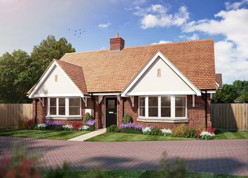 Thumbnail 2 bed detached bungalow for sale in Amlets Place, Amlets Lane, Cranleigh