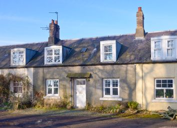 Thumbnail 3 bed terraced house for sale in Hilton Farm Cottages, Whitsome