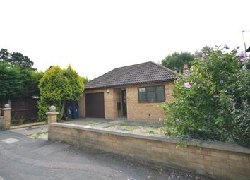 Thumbnail 2 bedroom bungalow to rent in Lone Tree Avenue, Impington, Cambridge