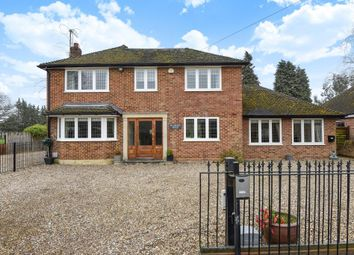 Thumbnail 4 bed detached house to rent in Virginia Water, Surrey