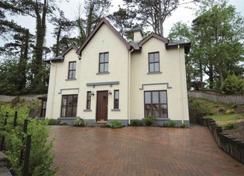 Thumbnail 4 bed detached house for sale in 7, Pinetrees, County Down