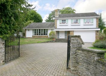 Thumbnail 5 bed detached house to rent in Chauntry Road, Maidenhead
