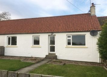Thumbnail 3 bed detached house to rent in Northbank Farm Cottages, By St Andrews, Fife