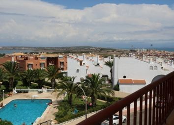 Thumbnail Studio for sale in Nº 8, Calle Aquiles, 17, 03183 Torrevieja, Alicante, Spain