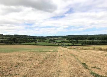 Thumbnail Farm for sale in Havenstreet, Ryde, Isle Of Wight