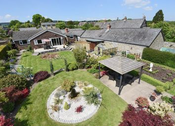 Thumbnail 3 bedroom detached bungalow for sale in Shobdon, Herefordshire