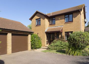 Thumbnail 4 bed detached house for sale in Oxford Close, Exmouth