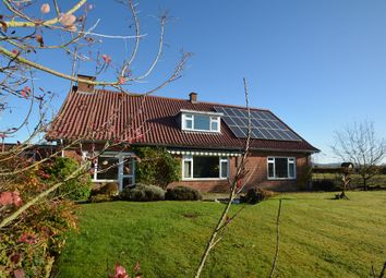Thumbnail 4 bed property to rent in Holme Lacy, Hereford