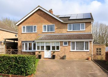 Thumbnail 5 bed detached house for sale in Orchard Way, Tasburgh, Norwich