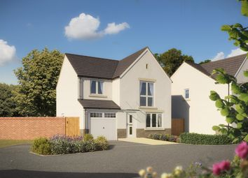 "Thumbnail 4 bed detached house for sale in ""The Roseberry"" at Walnut Close, Keynsham, Bristol"
