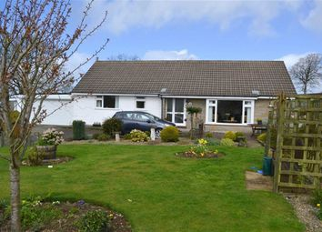 Thumbnail 5 bed detached bungalow for sale in Cilcennin, Lampeter, Ceredigion
