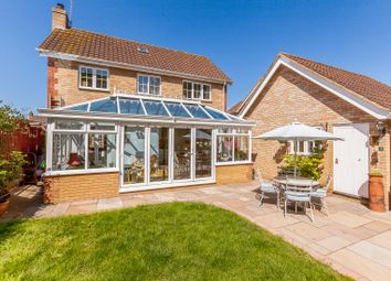 Thumbnail 3 bed detached house for sale in Rushmoor Drive, Braintree