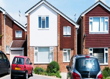 Thumbnail Room to rent in Willow Rise, Witham