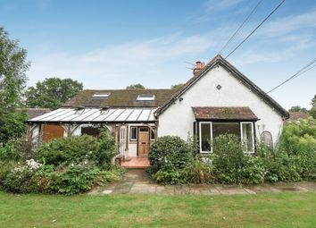 Thumbnail 4 bed semi-detached house to rent in Cranleigh Road, Ewhurst, Cranleigh