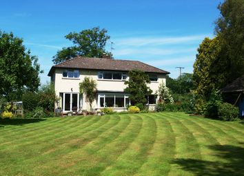 Thumbnail 4 bed detached house for sale in Whimple, Exeter