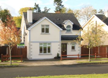 Thumbnail 3 bed detached house for sale in 20 Woodglade, Fenagh, Carlow