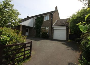 Thumbnail 4 bed detached house to rent in South Street, West Rainton, Houghton Le Spring