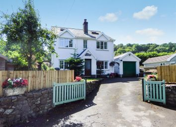 Thumbnail 4 bedroom detached house for sale in Oxwich, Swansea