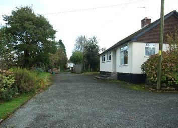 Thumbnail 3 bed bungalow to rent in St Brides Lane, Saundersfoot, Pembrokeshire