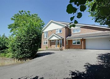 Thumbnail 5 bed detached house to rent in Highclere Drive, Hemel Hempstead