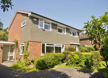 Thumbnail 4 bed detached house to rent in North Close, Havant